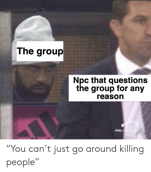 "DnD, Pro, and Reason: The group  Npc that questions  the group for any  reason  PRO ""You can't just go around killing people"""