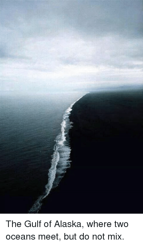 two rivers meet but do not mix
