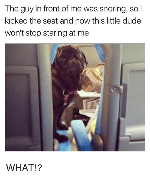 the guy in front of me was snoring so i 12548261 ✅ 25 best memes about stop staring stop staring memes