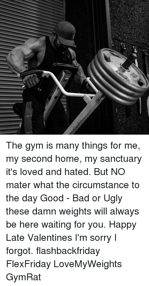 The gym is many things for me my second home sanctuary