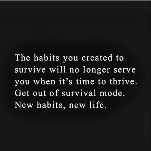Life, Time, and Thrive: The habits you created to  survive will no longer serve  you when it's time to thrive.  Get out of survival mode.  New habits, new life.