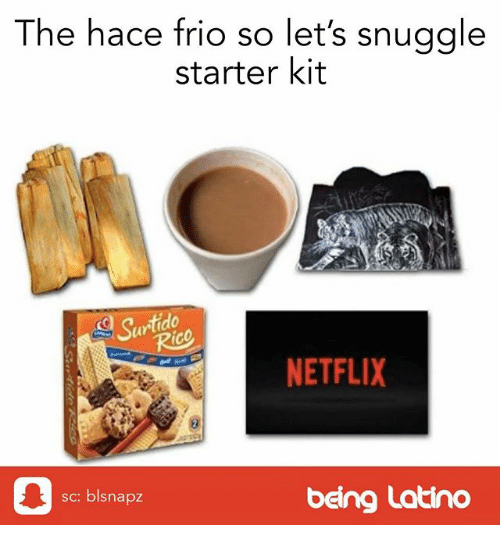 Memes, Netflix, and Starter Kit: The hace frio so let's snuggle  starter kit  Sutido  ic  ar  NETFLIX  sc: blsnapz  being Latino