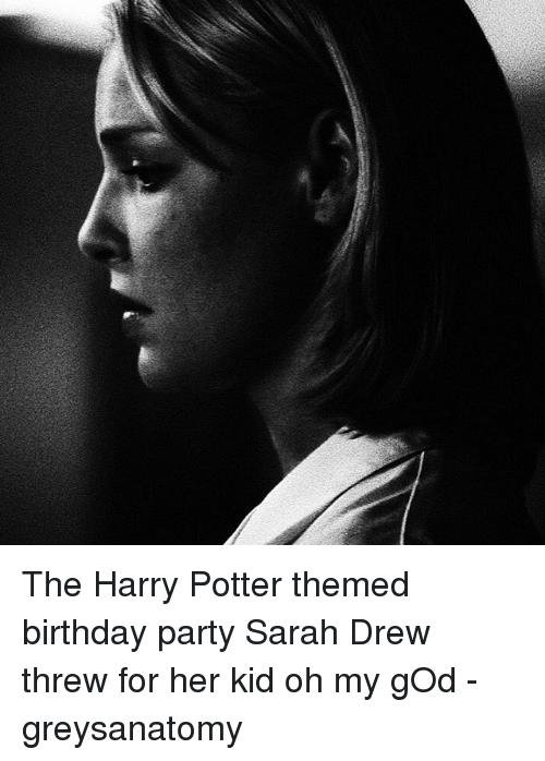 Memes And Theme The Harry Potter Themed Birthday Party Sarah Drew Threw