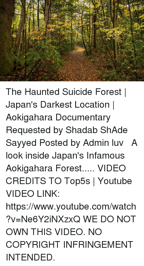 The Haunted Suicide Forest | Japan's Darkest Location | Aokigahara