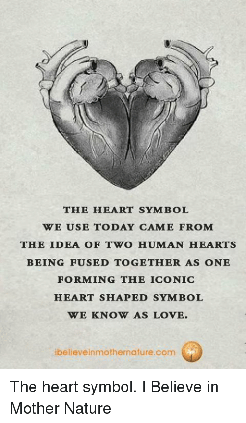 The Heart Symbol We Use Today Came From The Idea Of Two Human Hearts