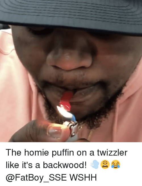 the homie puffin on a twizzler like its a backwood 17876579 ✅ 25 best memes about backwood backwood memes