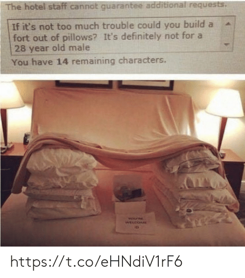 Definitely, Memes, and Too Much: The hotel staff cannot quarantee additional requests.  If it's not too much trouble could you build a  fort out of pillows? It's definitely not for a  28 year old male  You have 14 remaining characters.  YOPRE  WELCOME https://t.co/eHNdiV1rF6
