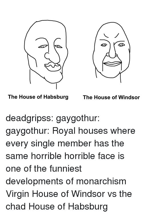 Tumblr, Virgin, and Blog: The House of Habsburg  The House of Windsor deadgripss: gaygothur:  gaygothur: Royal houses where every single member has the same horrible horrible face is one of the funniest developments of monarchism    Virgin House of Windsor vs the chad House of Habsburg
