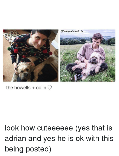 Memes And Yes The Howells Colin Honey Nut Howell I Ig