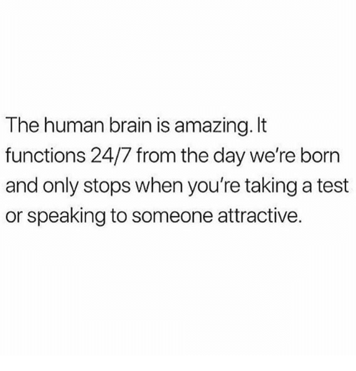 Memes, Brain, and Test: The human brain is amazing. It  functions 24/7 from the day we're born  and only stops when you're taking a test  or speaking to someone attractive.