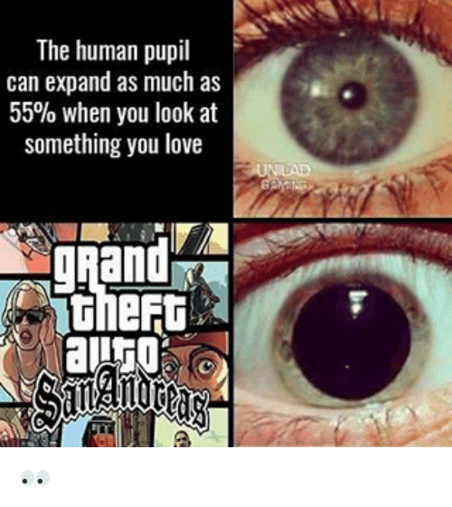 the human pupil can expand as much as 55 when 16384902 the human pupil can expand as much as 55% when you look at something