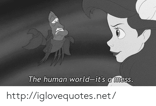 Http, World, and Net: The human world-it's a mess. http://iglovequotes.net/