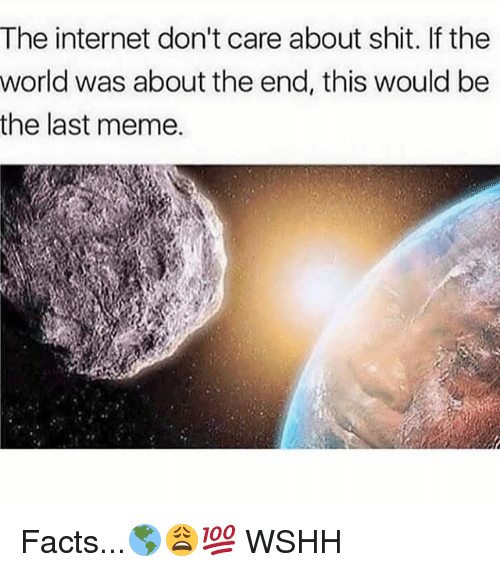 Facts, Internet, and Meme: The internet don't care about shit. If the  world was about the end, this would be  the last meme. Facts...🌎😩💯 WSHH