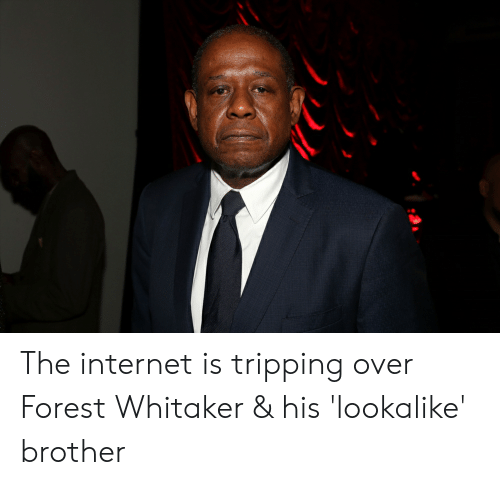 Forest Whitaker, Internet, and Forest: The internet is tripping over Forest Whitaker & his 'lookalike' brother