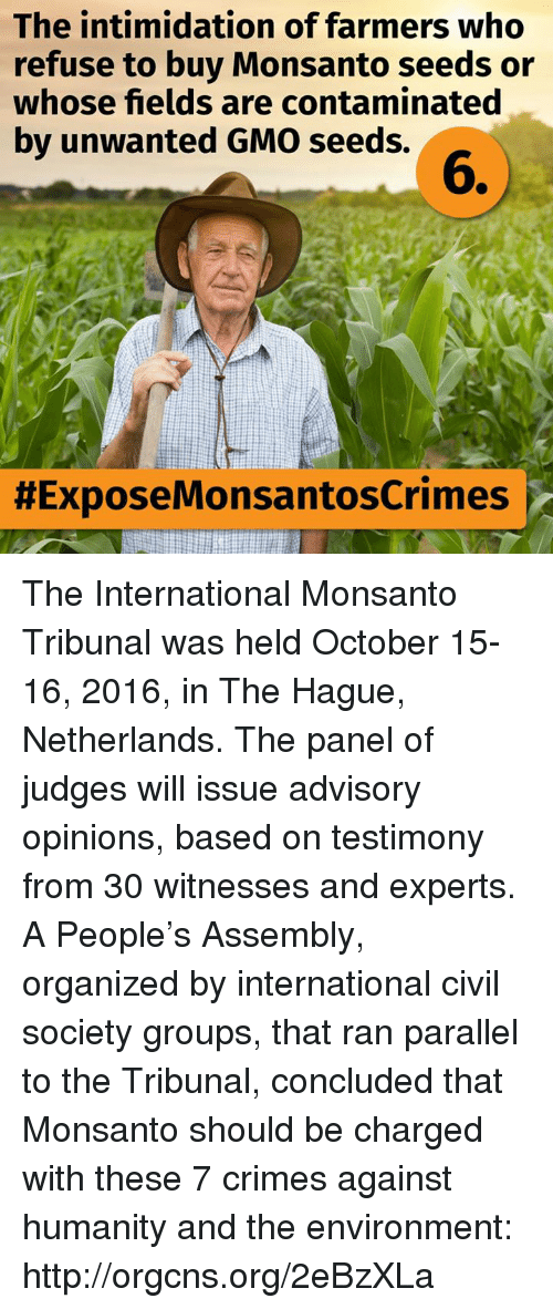 Crime, Irs, and Memes: The intimidation of farmers who  refuse to buy Monsanto seeds or  whose fields are contaminated  by unwanted GMO seeds.  HExposeMonsantoscrimes ir The International Monsanto Tribunal was held October 15-16, 2016, in The Hague, Netherlands. The panel of judges will issue advisory opinions, based on testimony from 30 witnesses and experts. A People's Assembly, organized by international civil society groups, that ran parallel to the Tribunal, concluded that Monsanto should be charged with these 7 crimes against humanity and the environment: http://orgcns.org/2eBzXLa