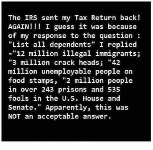 Irs Response To Trump Nothing Prevents Taxpayers From: 25+ Best Memes About Tax Return