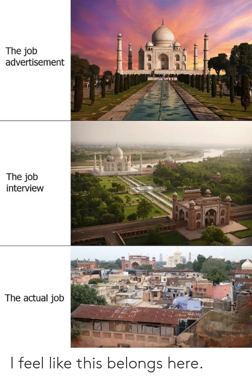 Job Interview, Job, and Interview: The job  advertisement  The job  interview  The actual job I feel like this belongs here.