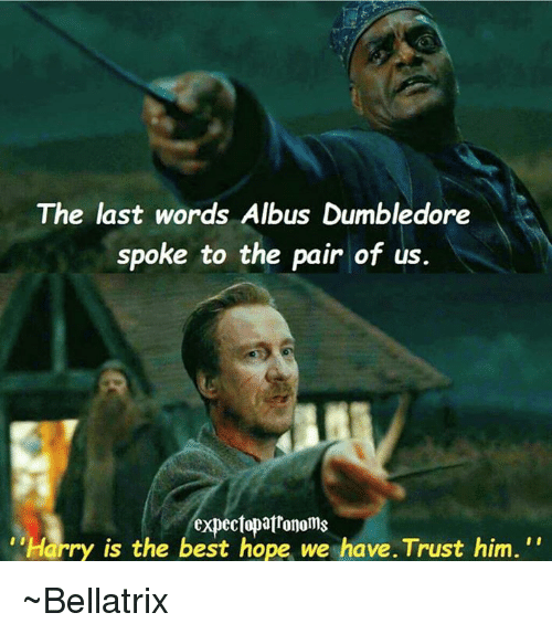 the last words albus dumbledore spoke to the pair of 6929715 the last words albus dumbledore spoke to the pair of us harry is,Dumbledore Meme