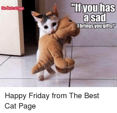 The Lbringsyou Gifts! Happy Friday From the Best Cat Page ...
