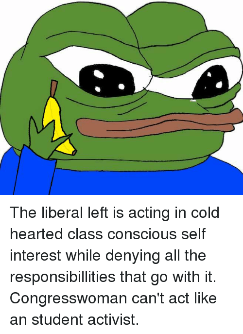 the conscious of a liberal