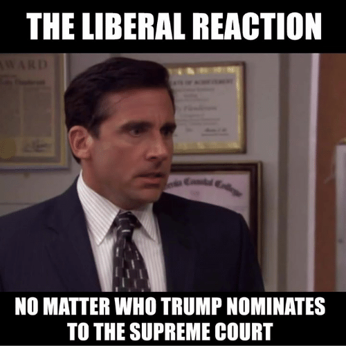 the liberal reaction no matter who trumpnominates to the supreme 13360403 the liberal reaction no matter who trumpnominates to the supreme