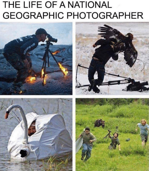 Life, National Geographic, and  Photographer: THE LIFE OF A NATIONAL  GEOGRAPHIC PHOTOGRAPHER  SE PTES