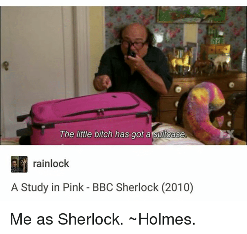 Memes, 🤖, and Holmes: The little bitch has got a Suitcase  rainlock  A Study in Pink BBC Sherlock (2010) Me as Sherlock.  ~Holmes.