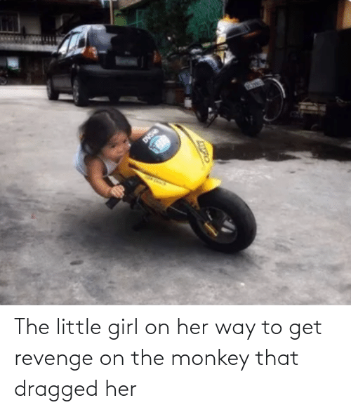 Revenge, Girl, and Monkey: The little girl on her way to get revenge on the monkey that dragged her