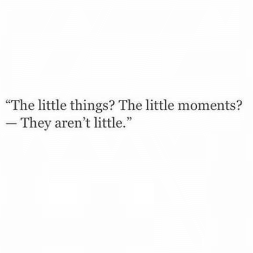 """They,  Things, and  Little Things: """"The little things? The little moments?  -They aren't little."""""""