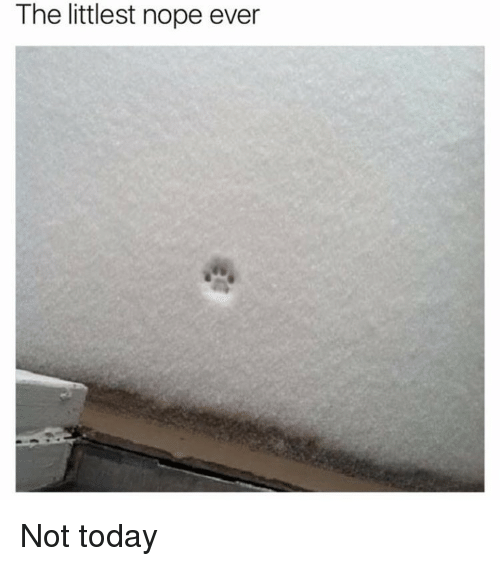 [Image: the-littlest-nope-ever-not-today-8757883.png]