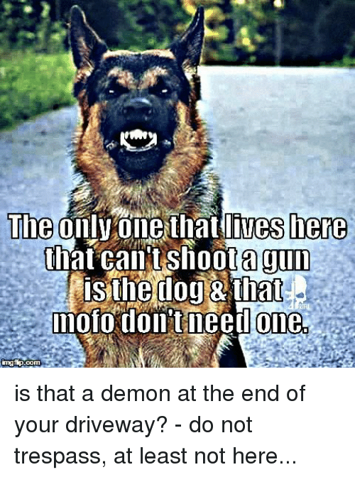 Memes, Only One, and 🤖: The  lives here  only one that Shoota gun  that CantS  isthedog that  mofo dollit need one  imgfip. is that a demon at the end of your driveway? - do not trespass, at least not here...