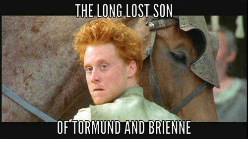 the long lost son of tormund and brienne 27273438 the long lost son of tormund and brienne meme on me me