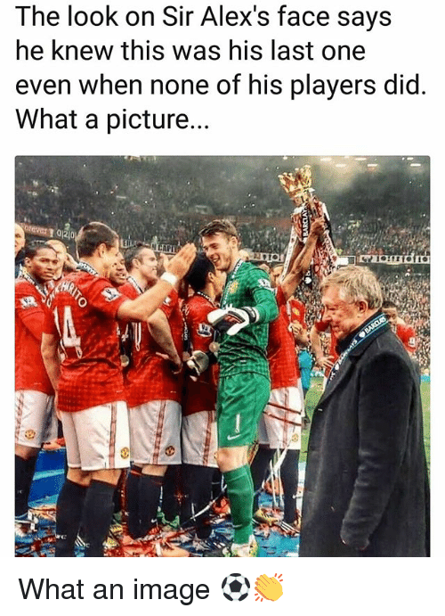 Memes, Image, and A Picture: The look on Sir Alex's face says  he knew this was his last one  even when none of his plavers did  What a picture.  CAP What an image ⚽️👏
