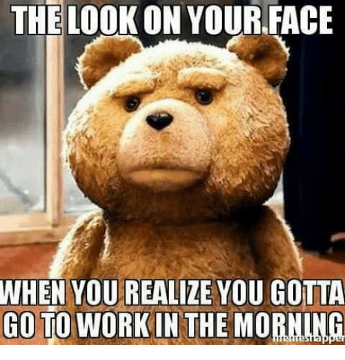 Memes, 🤖, and Face: THE LOOK ON YOUR FACE  WHEN YOU REALIZE YOU GOTTA  GO TO WORKIN THE MORNING