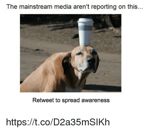 Memes, 🤖, and Media: The mainstream media aren't reporting on this...  Retweet to spread awareness https://t.co/D2a35mSIKh