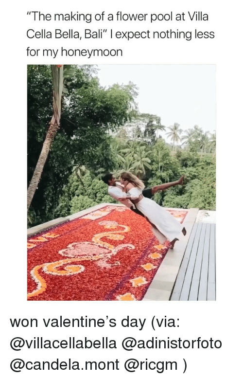 "Honeymoon, Bali, and Flower: ""The making of a flower pool at Villa  Cella Bella, Bali"" l expect nothing less  for my honeymoon won valentine's day (via: @villacellabella @adinistorfoto @candela.mont @ricgm )"