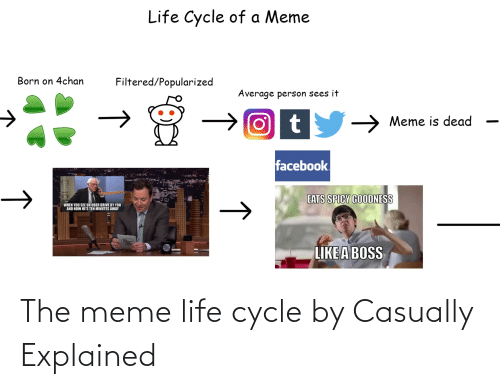 Life, Meme, and Reddit: The meme life cycle by Casually Explained