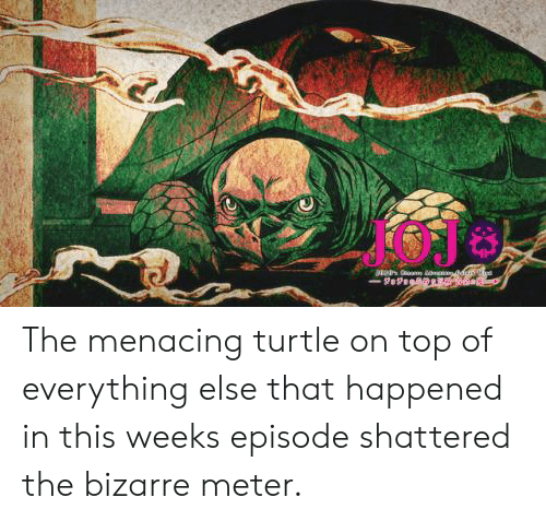 Turtle, Bizarre, and Top: The menacing turtle on top of everything else that happened in this weeks episode shattered the bizarre meter.