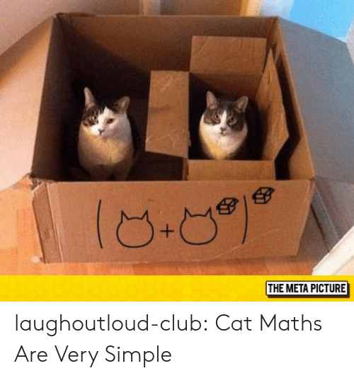Club, Tumblr, and Blog: THE META PICTURE laughoutloud-club:  Cat Maths Are Very Simple