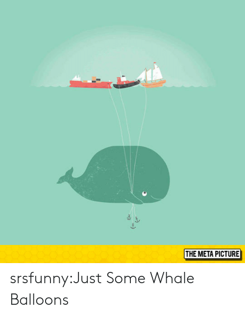 Tumblr, Blog, and Http: THE META PICTURE srsfunny:Just Some Whale Balloons