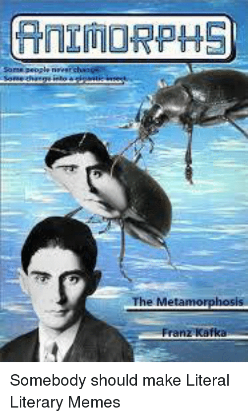a literary analysis of the metamorphosis by franz kafka Dive deep into franz kafka's the metamorphosis with extended analysis, commentary, and discussion.