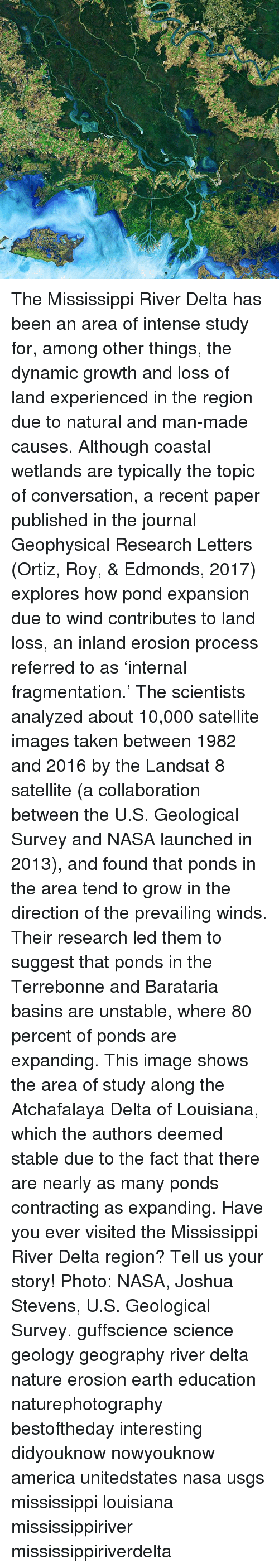 America, Memes, and Nasa: The Mississippi River Delta has been an area of intense study for, among other things, the dynamic growth and loss of land experienced in the region due to natural and man-made causes. Although coastal wetlands are typically the topic of conversation, a recent paper published in the journal Geophysical Research Letters (Ortiz, Roy, & Edmonds, 2017) explores how pond expansion due to wind contributes to land loss, an inland erosion process referred to as 'internal fragmentation.' The scientists analyzed about 10,000 satellite images taken between 1982 and 2016 by the Landsat 8 satellite (a collaboration between the U.S. Geological Survey and NASA launched in 2013), and found that ponds in the area tend to grow in the direction of the prevailing winds. Their research led them to suggest that ponds in the Terrebonne and Barataria basins are unstable, where 80 percent of ponds are expanding. This image shows the area of study along the Atchafalaya Delta of Louisiana, which the authors deemed stable due to the fact that there are nearly as many ponds contracting as expanding. Have you ever visited the Mississippi River Delta region? Tell us your story! Photo: NASA, Joshua Stevens, U.S. Geological Survey. guffscience science geology geography river delta nature erosion earth education naturephotography bestoftheday interesting didyouknow nowyouknow america unitedstates nasa usgs mississippi louisiana mississippiriver mississippiriverdelta