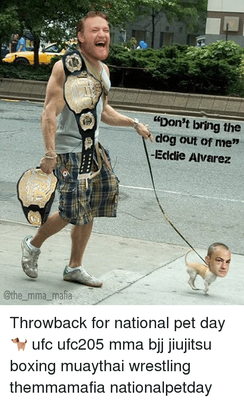 "Boxing, Memes, and Ufc: @the mma mafia  ""Don't bring the  clog out of me""  -Eddie Alvarez Throwback for national pet day 🐕 ufc ufc205 mma bjj jiujitsu boxing muaythai wrestling themmamafia nationalpetday"