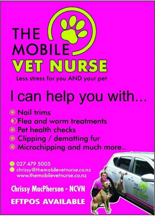 The MOBILE VET NURSE Less Stress for You AND Your Pet I Can