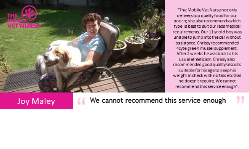 """Food, Memes, and Best: """"The Mobile Vet Nurse not only  THE  MO'BILE  VET NURS  deliverstop quality food for our  pooch; she alsorecommends which  type is best to suit our lads medical  requirements. Our 11 yr old boywas  unableto jumpintothecarwithout  assistance. Chrissy recommended  4cyte green mussel supplement.  After 2 weekshewasbackto his  usual athleticism. Chrissy also  recommended good quality biscuits  suitablefor his ageto keephis  weight incheck with nofats etc that  he doesn't require. Wecannot  recommend thisservice enough""""  6We cannot recommend this service enough  Joy Maley"""
