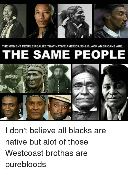 The MOMENT PEOPLE REALIZE THAT NATIVE AMERICANS & BLACK ...