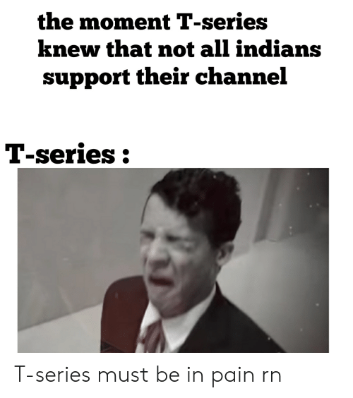 Pain, Indians, and Channel: the moment T-series  knew that not all indians  support their channel  T-series: T-series must be in pain rn