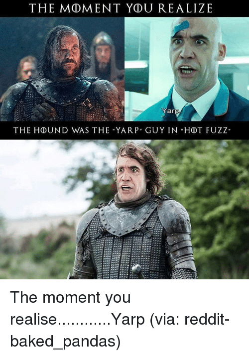 the moment ydu realize yarp the hound was the yar 15248540 ✅ 25 best memes about the hound the hound memes