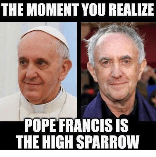 Memes, Pope Francis, and Pope Francis: THE MOMENT YOU REALIZE  POPE FRANCIS IS  THE HIGHSPARROW