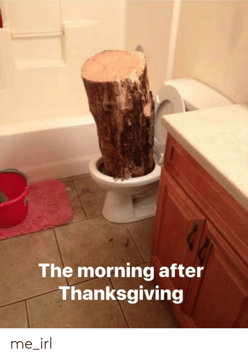 The Morning After Thanksgiving Me Irl Thanksgiving Meme On Me Me